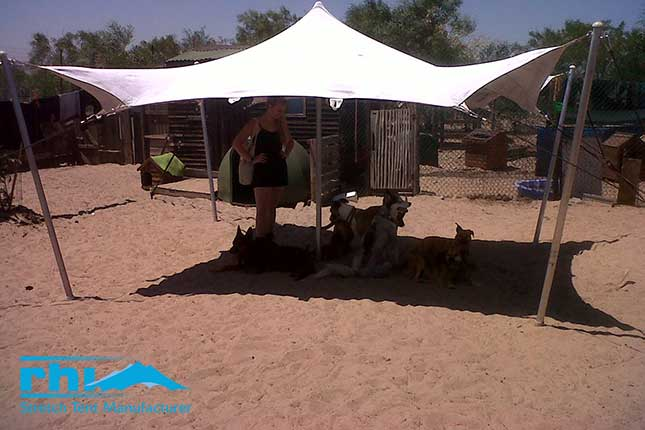 RHI-sponsored stretch for a dog shelter in Cape Town