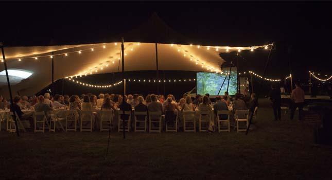 Stretch tent lighting: Fairy lights