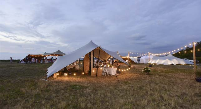 Stretch tent lights: Fairy lights